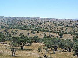 uren rijden we door steenwoestijn en steppe landschap