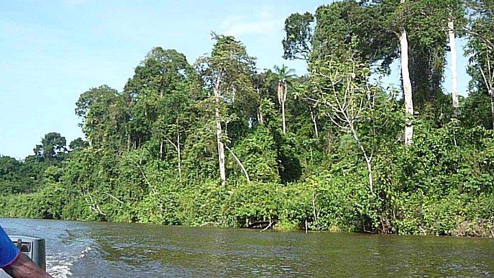 Korjaaltocht op de bovenloop van de Suriname rivier.