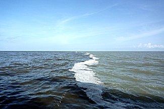 Het rivier water ontmoet het oceaan water.