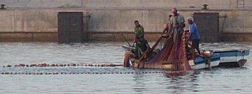 Kuilvisserij in de haven door lokale visserlui
